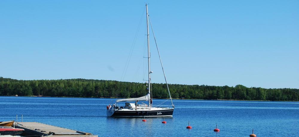 Båt, vatten, flotte, skog